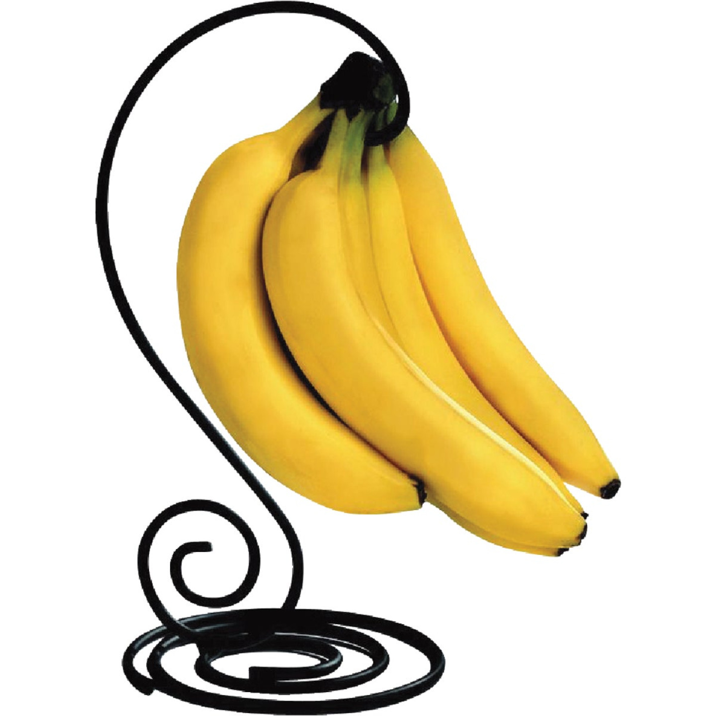 Spectrum Scroll Black Banana Tree Image 1