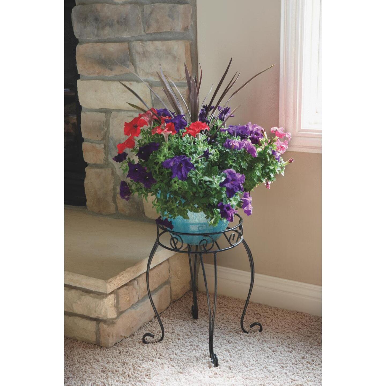 Best Garden Black Steel 21 In. H. Plant Stand Image 2